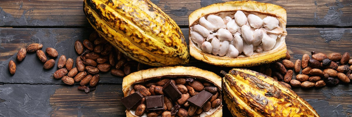 cacao-now-raw-vs-roasted-title-3